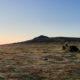 Sunrise, Sharpitor, Dartmoor